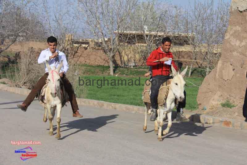 مسابقات الاغ سواری روستای برغمد سال ۹۲